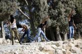 إصابات بمواجهات عنيفة مع الاحتلال بالضفة المحتلة