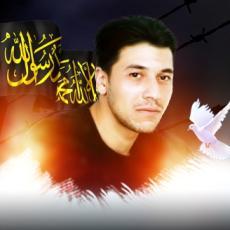 بهاء يوسف عبد القادر شبراوي