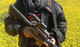 محمود نجم (29929367) 
