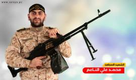 محمد الناعم (2)