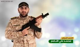 محمد الناعم 