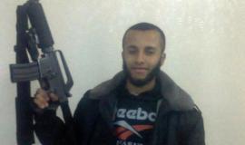 محمود نجم (29929376) 