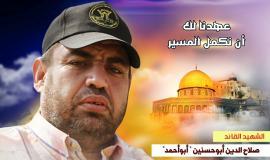 صلاح أبو حسنين (33)