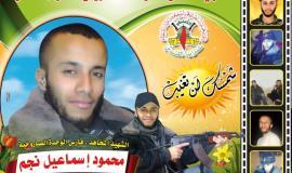 محمود نجم (29929358) 