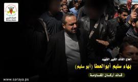 بهاء أبو العطا2