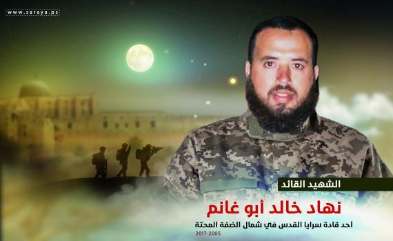 نهاد أبو غانم