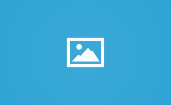 هشام حمد